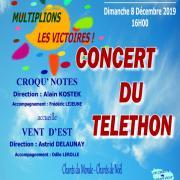 Aff concert du telethon 2019
