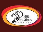 Diguedondaines logo